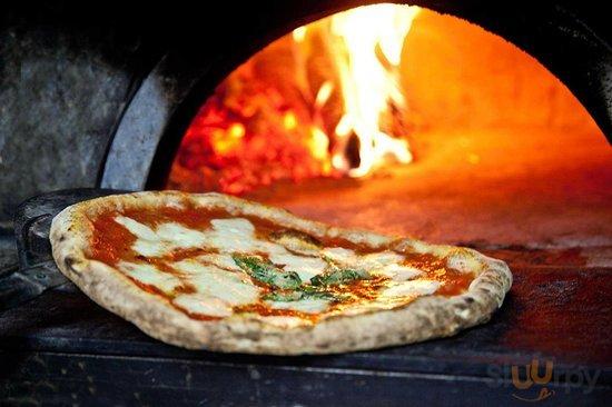 Ristorante Pizzeria Lo Squalo
