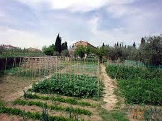 Agriturismo Maccarini