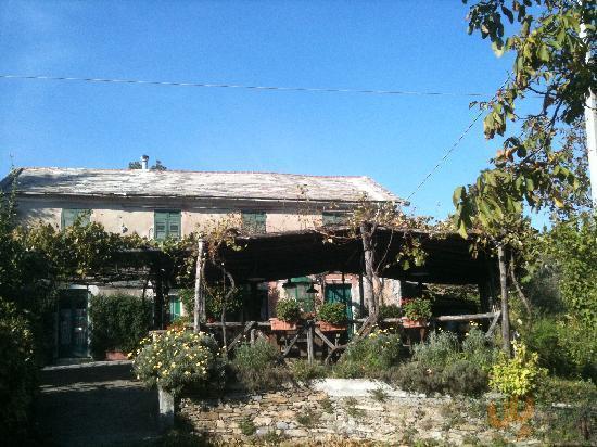 orto di Liguria