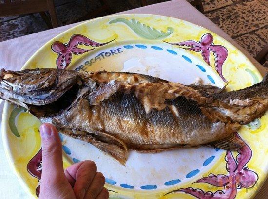 il pescatore! 15\/03\/2012