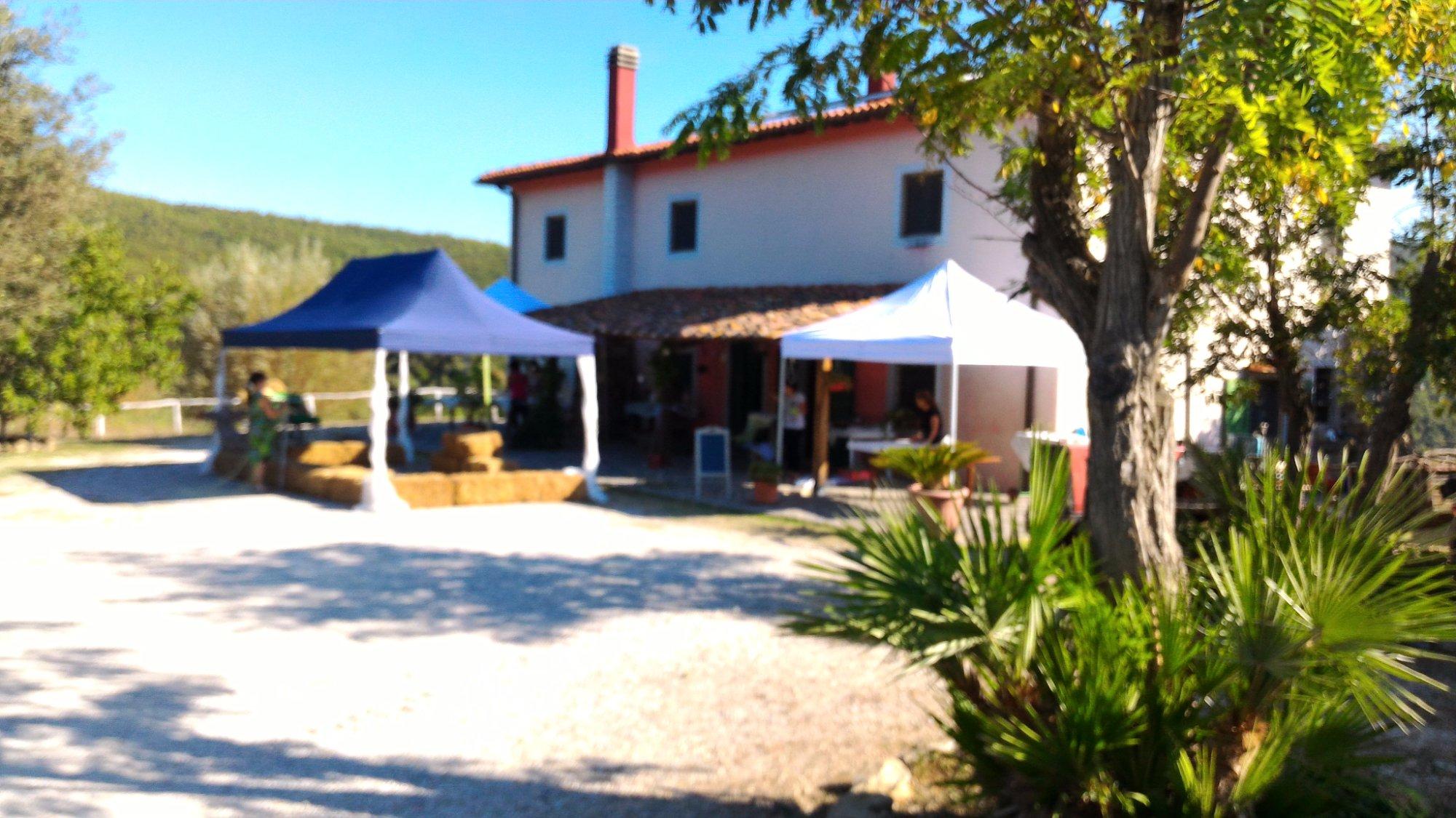 Azienda AgricolaPodere I Livelli
