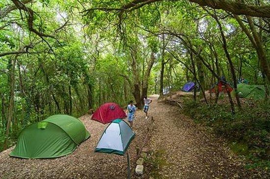 Campeggio Villaggio la Finoria