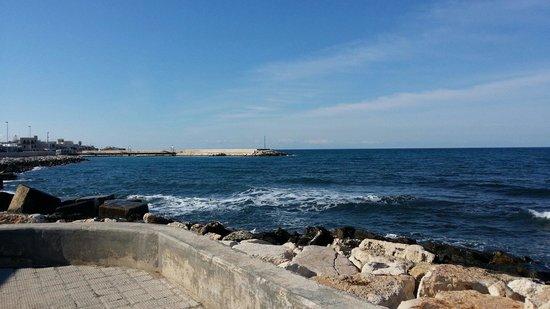 Ristorante Beluga, Bari