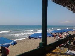 Carmen Bay, Capalbio