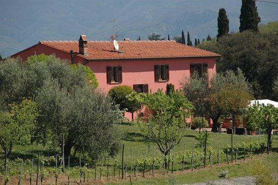 A Casa Nostra, Pistoia