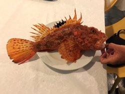 Foto del ristorante Ristorante Oscar