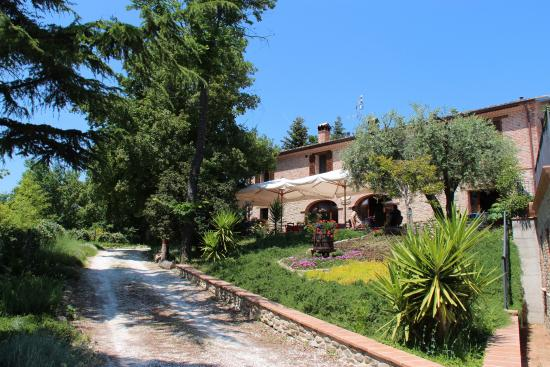 Agriturismo Biologico Villa Rosa, Montefelcino