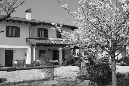 Azienda Agrituristica Stekar Sonia, San Floriano del Collio