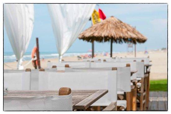 Foto del ristorante La Barraca