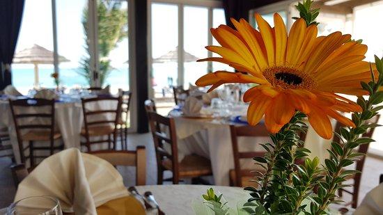 Foto del ristorante Raphael Beach Ristorante Pizzeria sul Mare