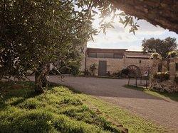Piccola Masseria Li Curti, Caprarica di Lecce