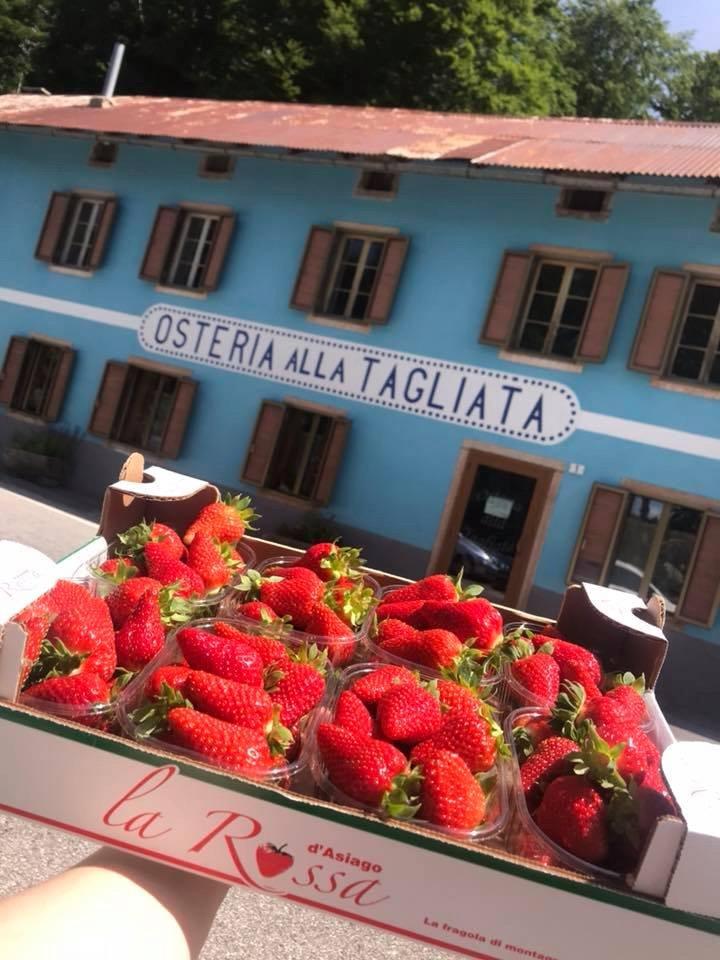 Osteria Alla Tagliata, Camporovere