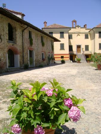 Villa Delfini, Morsasco