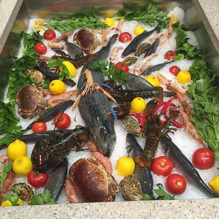 Il Pescatore 4, Casale Monferrato