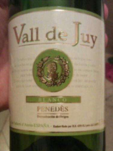 Vall de Juy