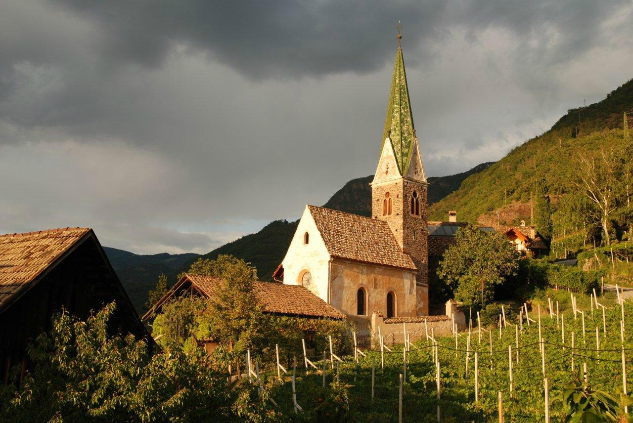 Weingut Messnerhof Azienda Vitivinicola