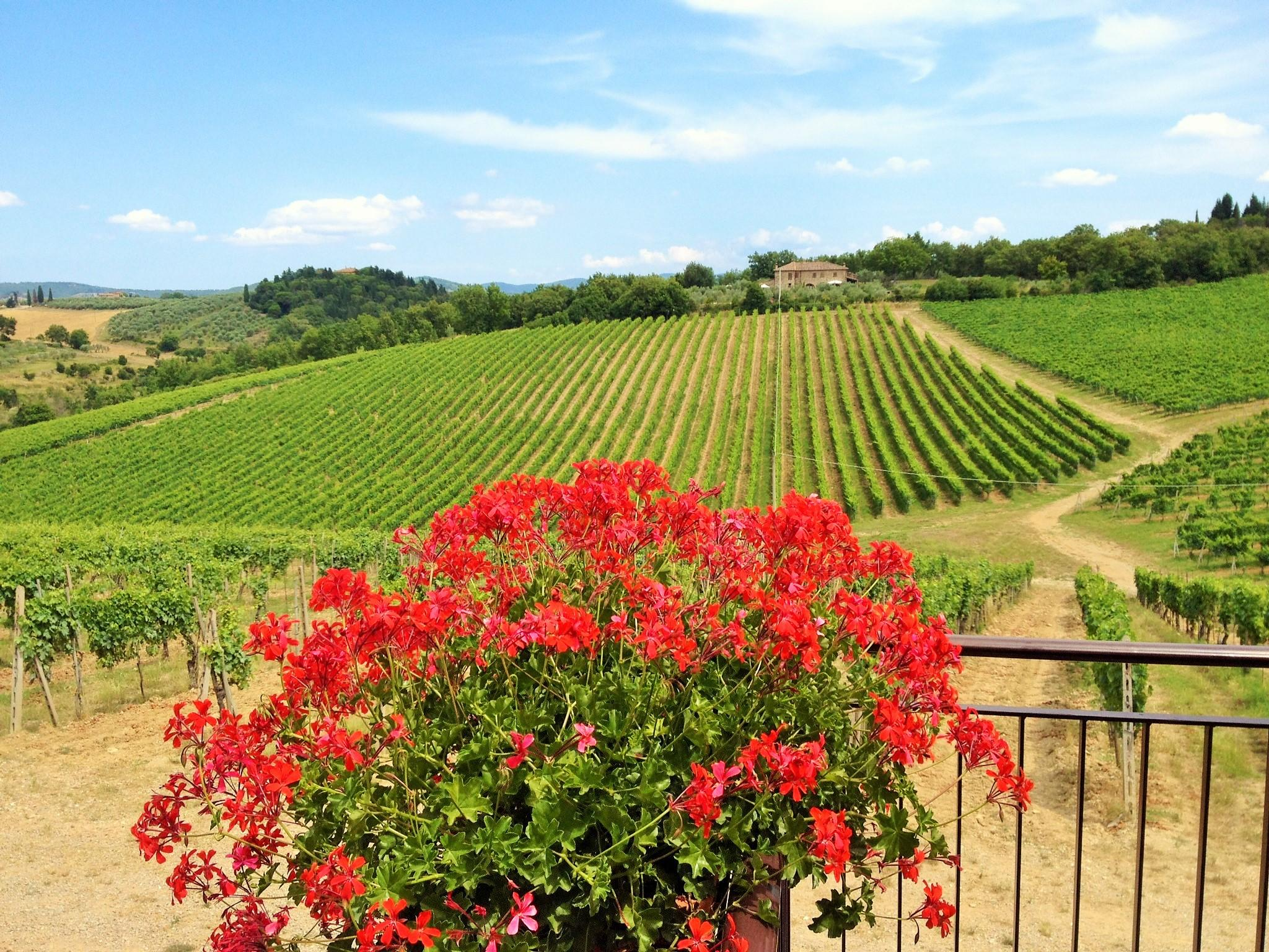 Tuscany and Umbria Tours - Day Tours
