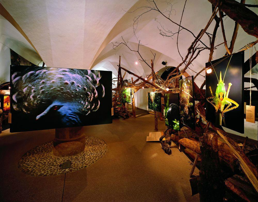 Naturmuseum Sudtirol