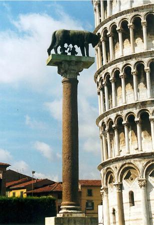 Grifo Tour - Centro Guide in Toscana