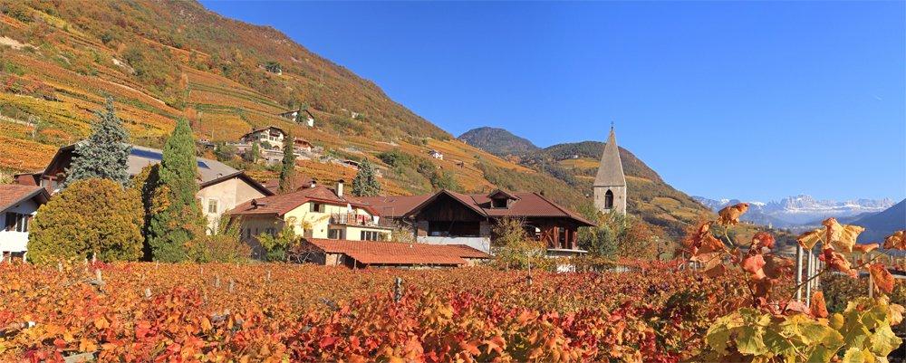 Weingut Plonerhof