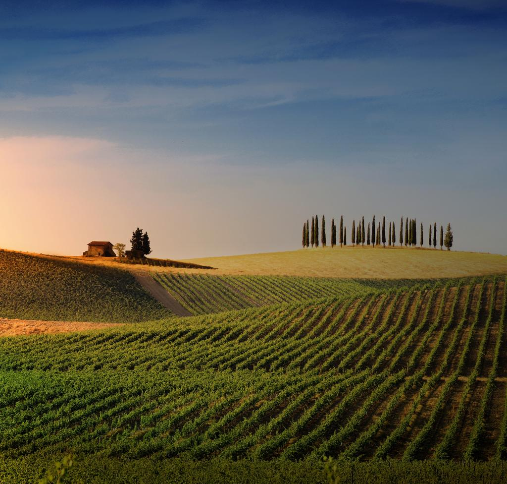 Tuscany in Tour