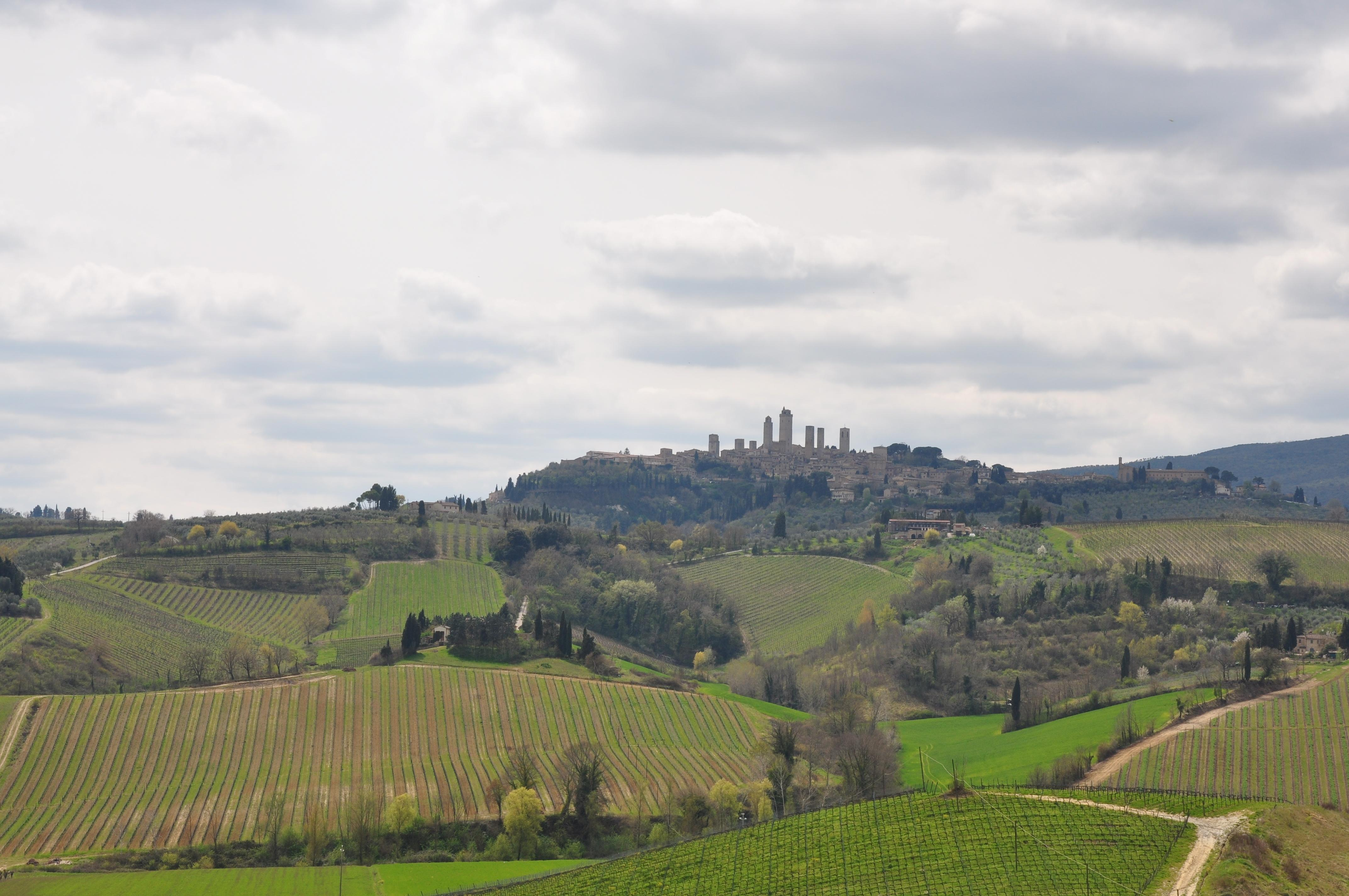 Tuscany in One Day Sightseeing Tour
