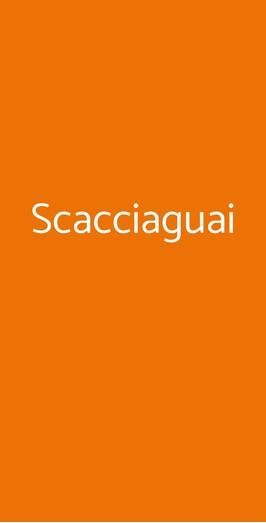 Scacciaguai, Barga