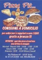 Pizza Piu', Torino