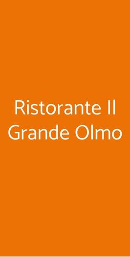 Ristorante Il Grande Olmo, Monzambano