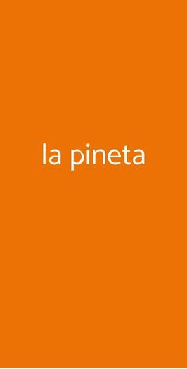La Pineta, Brandizzo